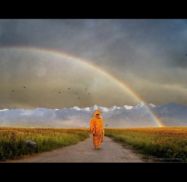Rainbow Warrior by h.koppdelaney